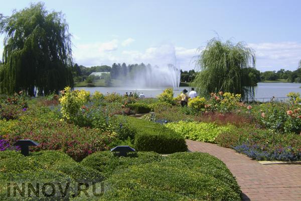 «Сад будущего» разобьют на территории древней усадьбы
