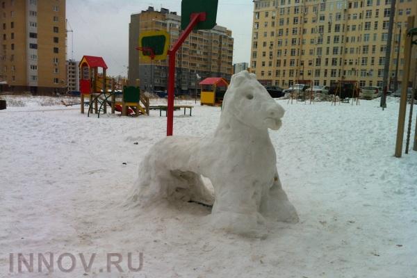 Оценка техногенного воздействия на городскую среду по загрязненности снежного покрова