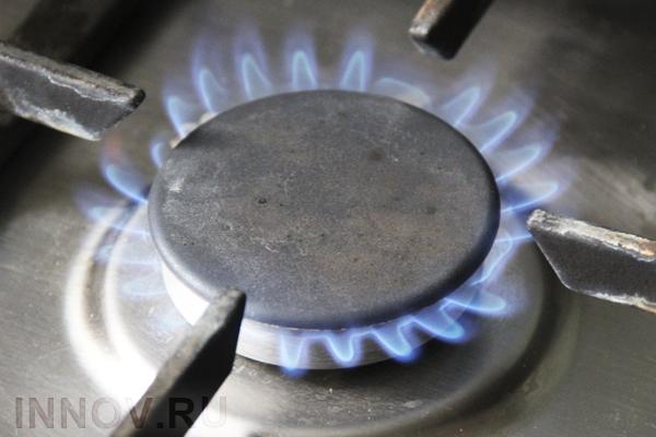 Срок установки газовых счетчиков в России продлен на три года