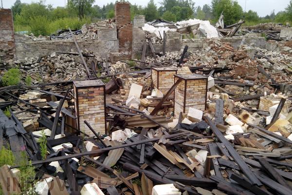 Власти Петербурга хотят построить завод по переработке мусора в Каменке