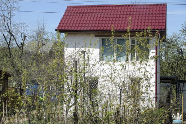 Правила выбора профнастила для крыши