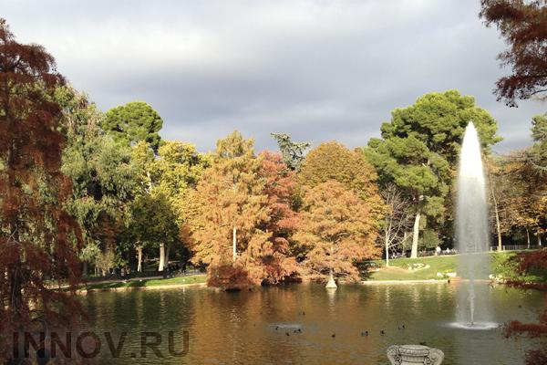 В столичном районе Печатники создадут новый парк