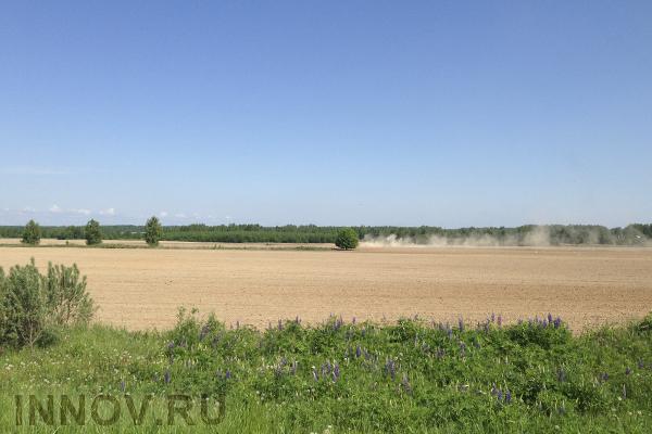 Штрафы за неиспользование земель под ИЖС могут отменить