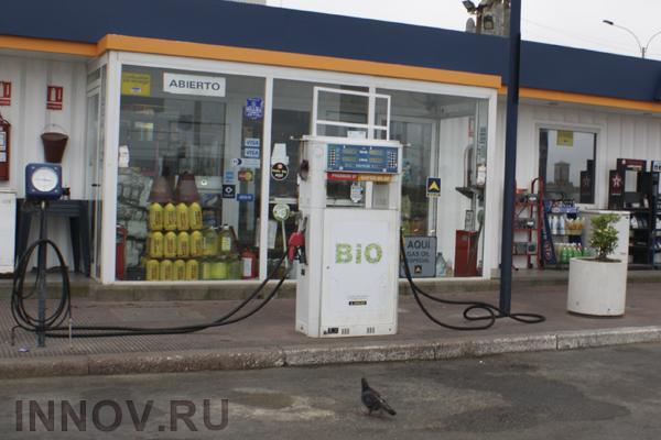 Биогазовая технология за рубежом