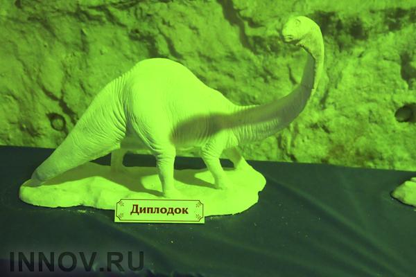 Учёным удалось подсчитать, сколько видов динозавров жило на Земле