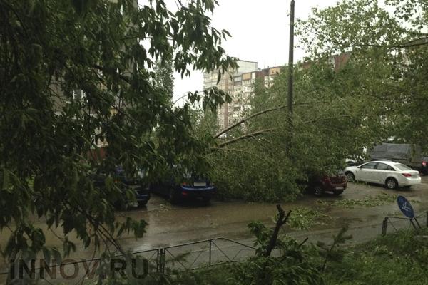 Последствия урагана в столице ликвидируют за двое суток