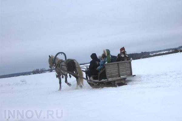 Механизм управления экологическим туризмом в Российской Федерации